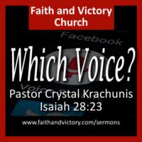 Which Voice?
